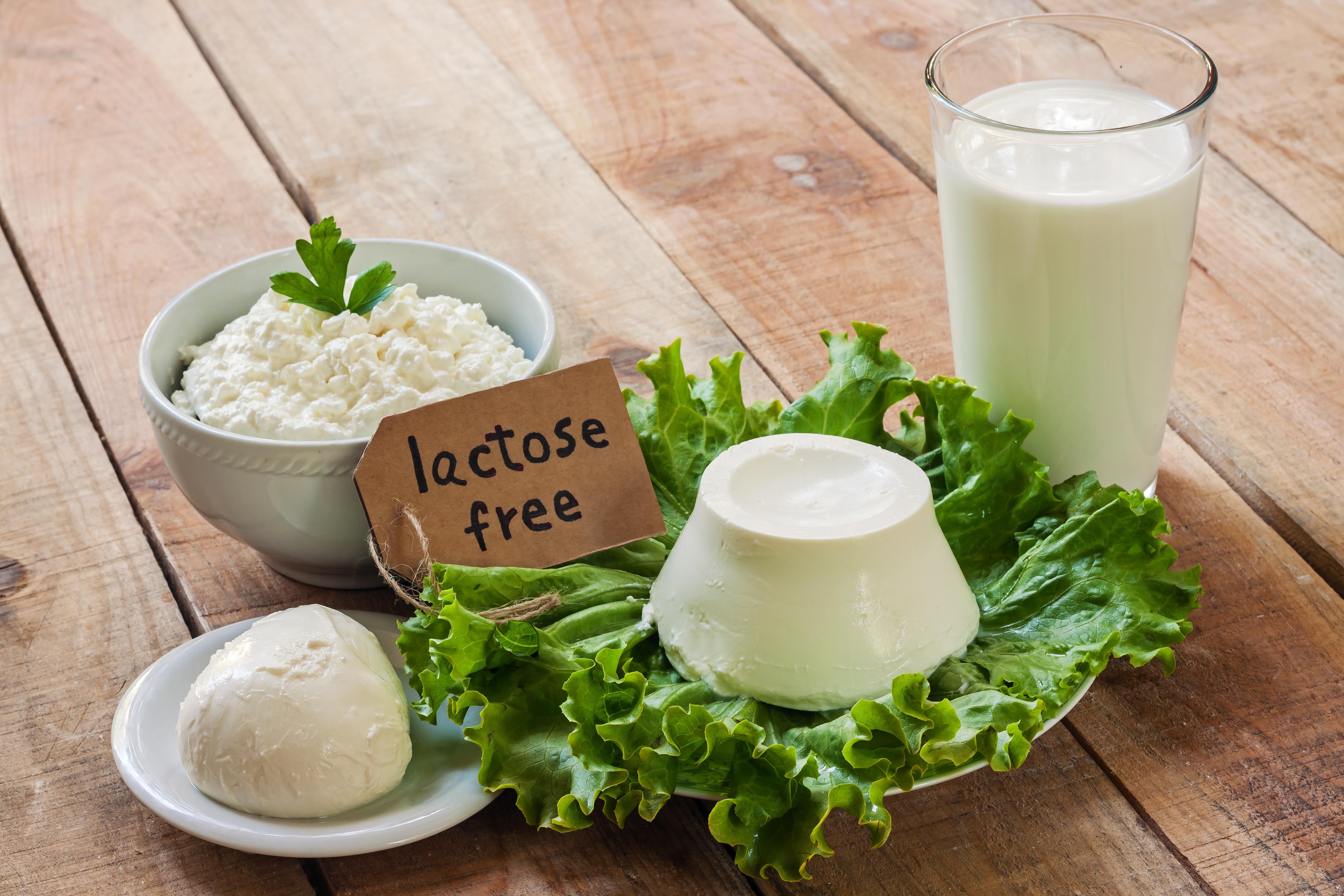 Alimenti che non contengono lattosio